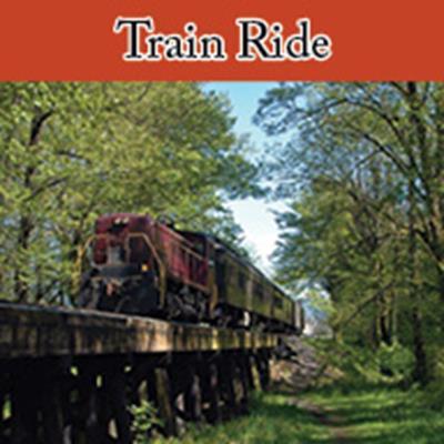 Train Ride - Standard Schedule